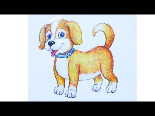 Уроки рисования. Как нарисовать щенка how to draw a cute puppy   Art School