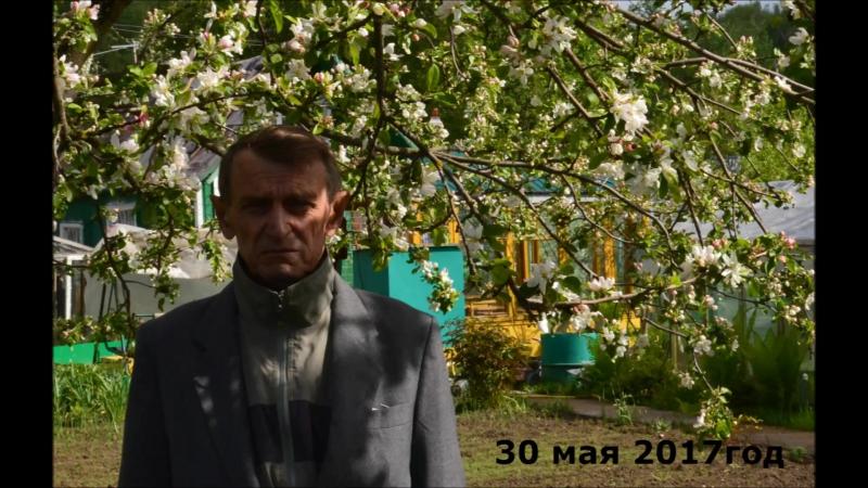 МАЙ 2017 в КРАСНОАРМЕСКЕ