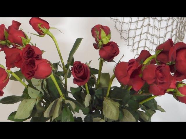 Как оживить увядшие розы Таймлапс