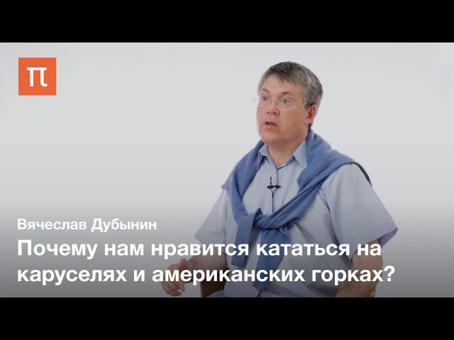 Вестибулярная система — Вячеслав Дубынин