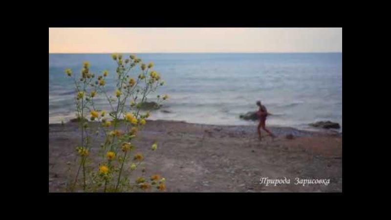 НЕЖНОЕ МОРЕ | ЗВУКИ ВОЛН | Морской прибой | Морской бриз | Морская волна | Лисья бухта | Лиска