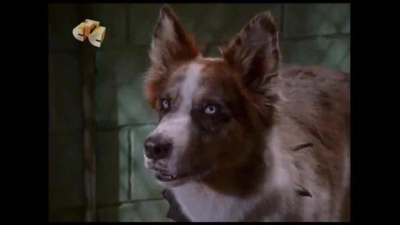 100 подвигов Эдди Макдауда 1 сезон смотреть онлайн бесплатно