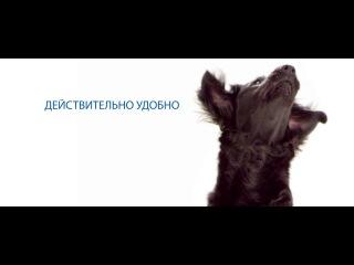 Merial RU - НексгарД Спектра – новая таблетка для собак от клещей, блох и глистов