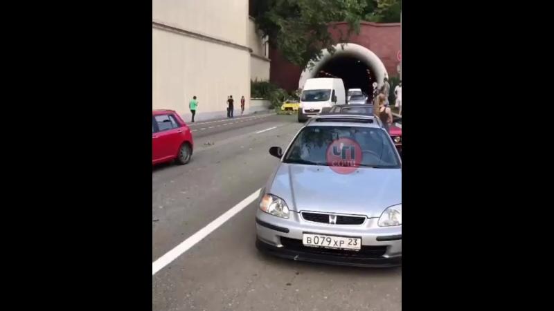 Дерево упало на проезжающее авто в Сочи, выезд из Хостинского тоннеля