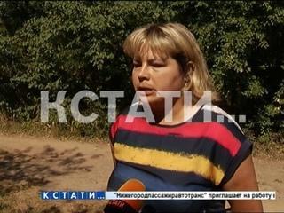 Житель Кстова зарезал собаку прямо на руках у ее хозяйки