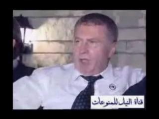 """Все тебя посылают на х*й!"" (с) Жириновский"