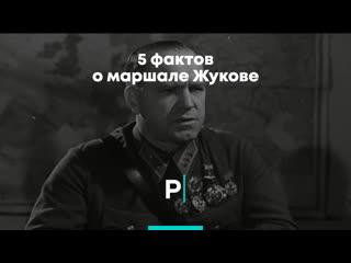 5 фактов о Маршале Жукове