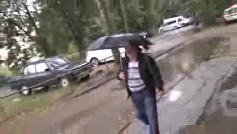гриб-подосиновик-КОЛБЕЦКИЙ с зонтом и ПРОРОК САН БОЙ