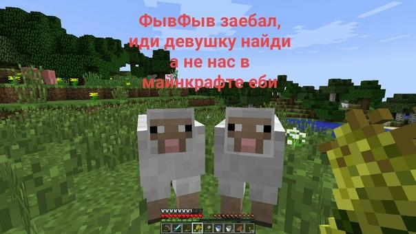 что едят овечки в майнкрафте #9