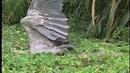 BBC Жизнь птиц 05 Рыболовы Документальный 1998