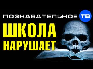Школа НАРУШАЕТ ЗАКОН. Вас УМЫШЛЕННО делают больными и сутулыми (Познавательное ТВ, Артём Войтенков)