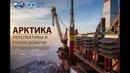 Лекция 3 АРКТИКА Перспективы открытия большой нефти