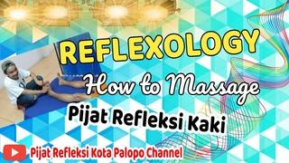 Reflexology |foot|, how to massage, #pijatpalopo