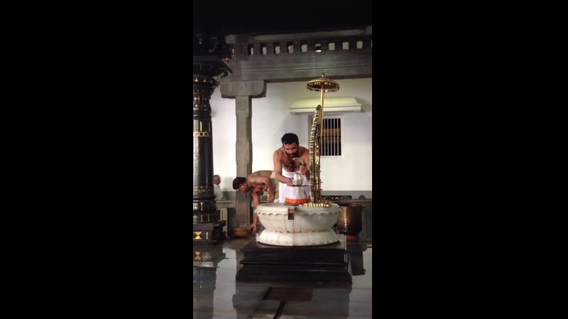 Ежедневная пуджа Шива лингаму в Ашраме Рамана Махарши Тируваннамалай