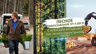 Лесное образование от А до Я с Ярошенко рук. лесного отдела Гринпис (часть 1)