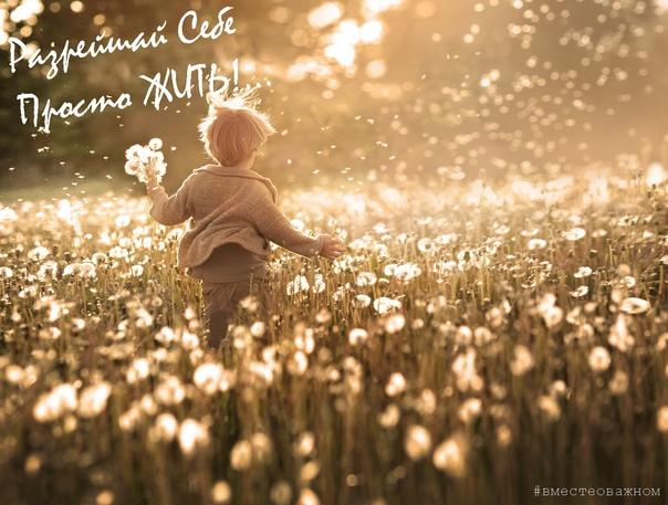 Радоваться жизни  это впускать саму Жизнь