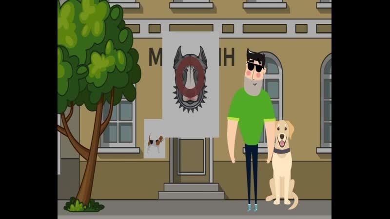 город для собак 2404