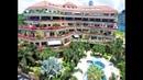 Nordic Residence Pattaya Real Estate for sale or rent Pratumnak HIll