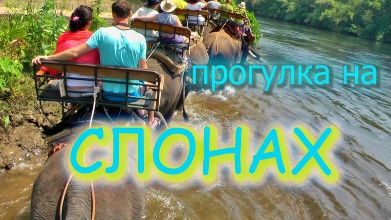 Путешествия и туризм.Тайланд.Экскурсия катание на слонах.Река Квай.