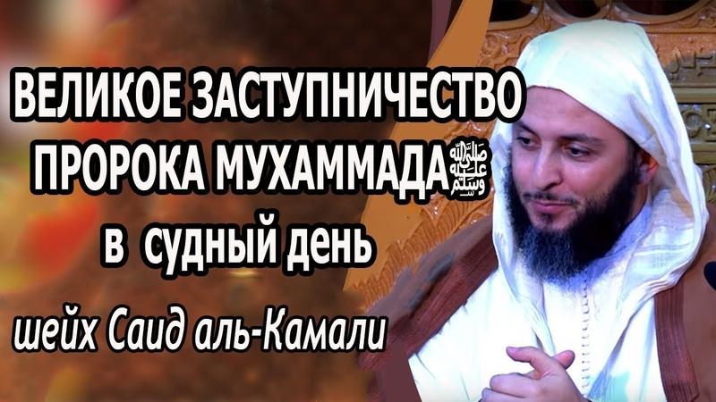 Великое заступничество пророка Мухаммадаﷺ в Судный День! Шейх Саид аль-Камали » Freewka.com - Смотреть онлайн в хорощем качестве