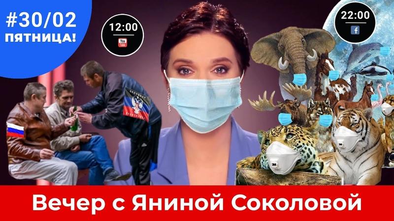 Вспышка герпеса в ДНР Петербург напал на Москву Соловьев унизил Путина Вечер 30 02