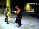 Kung fu hung gar