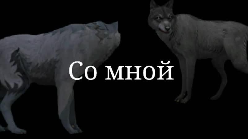 360_25_3.31_Nov132019_01.mp4