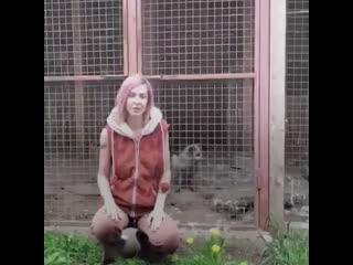 В Подмосковье живет девушка, которая приютила больше 100 собак