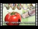 АПОКАЛИПСИС. ГМО урожай! Тайные знаки. Оружие массового поражения
