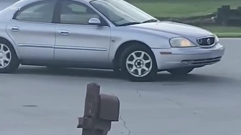 Собака угнала машину хозяина и прокатилась по городу