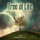 Audiomachine (Tree Of Life) - Equinox [OST Красавица и чудовище] {2017} (1 часть трейлера №3 / финальный трейлер)