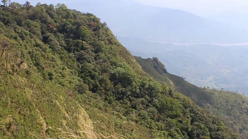 Free Video Footages - Phu chee dao peak of mountain , Chiang Rai , Thailand