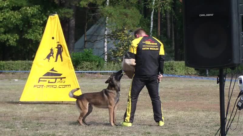 окдЗКС задержание невиномыск 80 Черноскулов бо Tengu небесная собака 40 балов