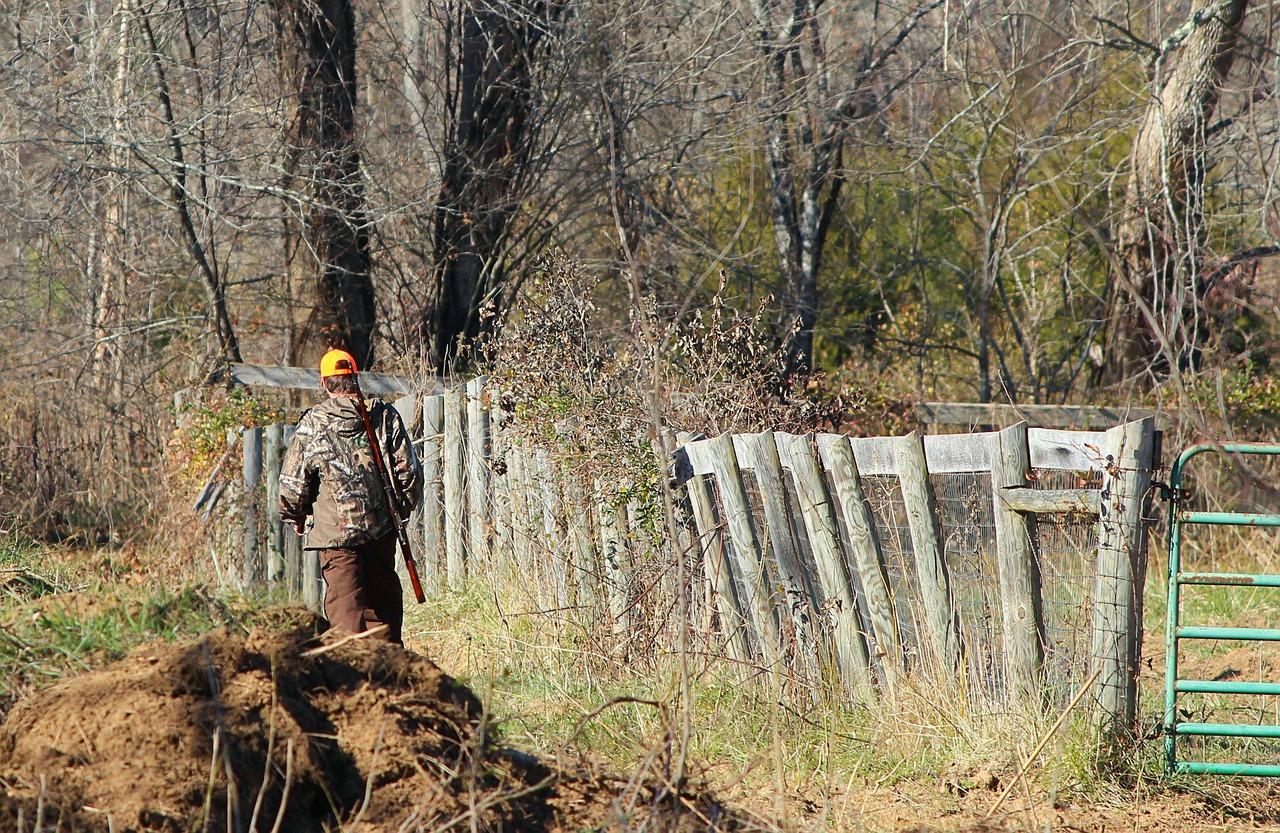В лесах Марий Эл обнаружено тело с огнестрелом