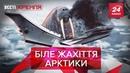 Моржі напали на флот РФ Вєсті Кремля 25 вересня 2019