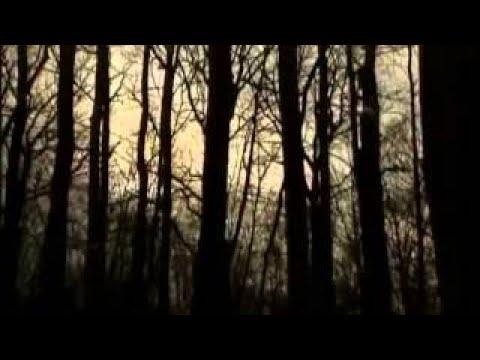 Ведьмы Карающий огонь инквизиции Мистика средневековья смотреть онлайн документальные фи