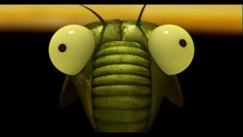 Букашки: - цикада у Бразилии