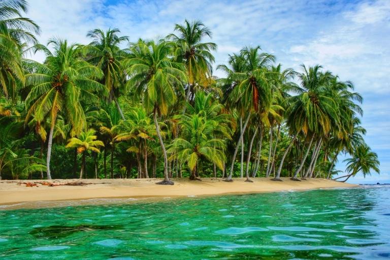 Прекрасный остров Сан-Бланс, изображение №2