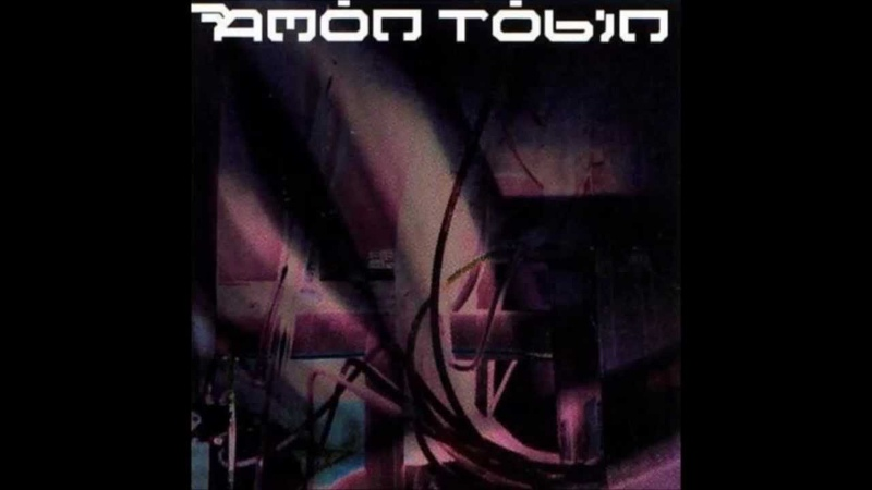 Amon Tobin-Like Regular Chickens