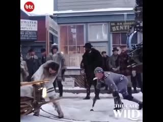 Как на самом деле снимают фильмы с животными