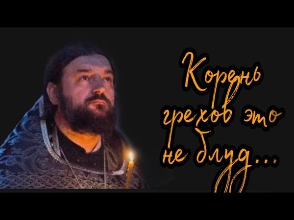 У нас много сложностей и нет святости Протоиерей Андрей Ткачёв