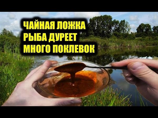 Одна чайная ложка и Рыбалка с Жором карасяндрика,карпов и плотвы,аттрактант для рыбалки