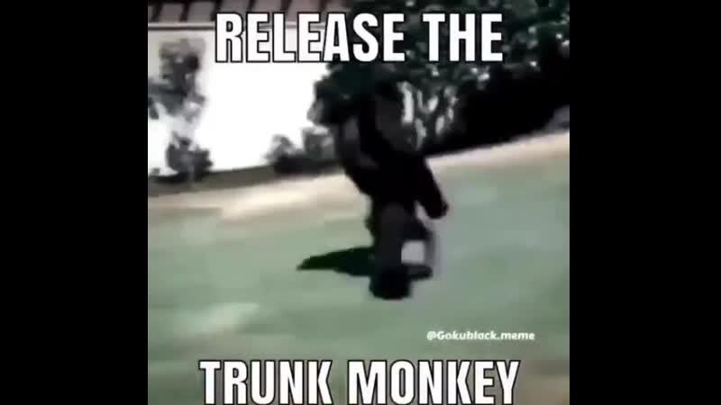 Trunk monke