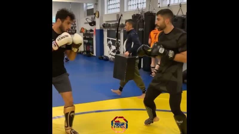 Gegard Mousasi training