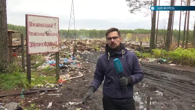 В Шенкурске убирают нелегальные свалки