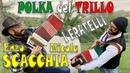 POLKA DEL TRILLO i fratelli ENZO e NICOLA SCACCHIA tecnica cinque dita e tradizionale dell'organetto