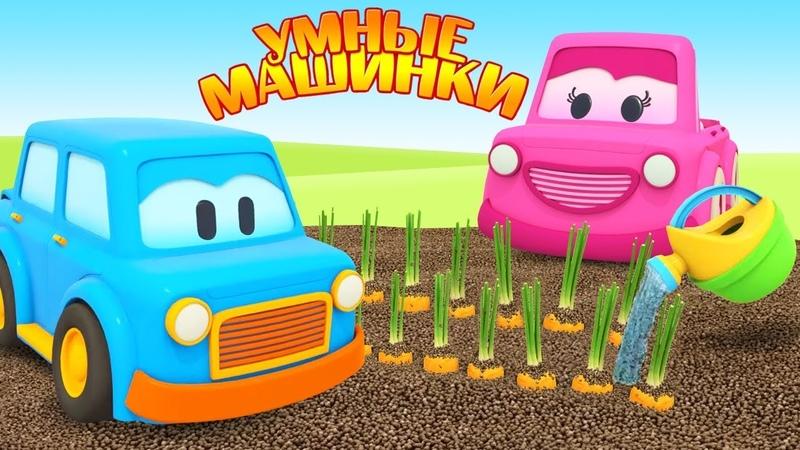 Учим овощи в огороде - Мультики для малышей Умные машинки - Игры развивающие