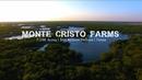 Texas Land Ranches Monte Cristo Farms 7 600 ACRE FARM EDINBURG TEXAS