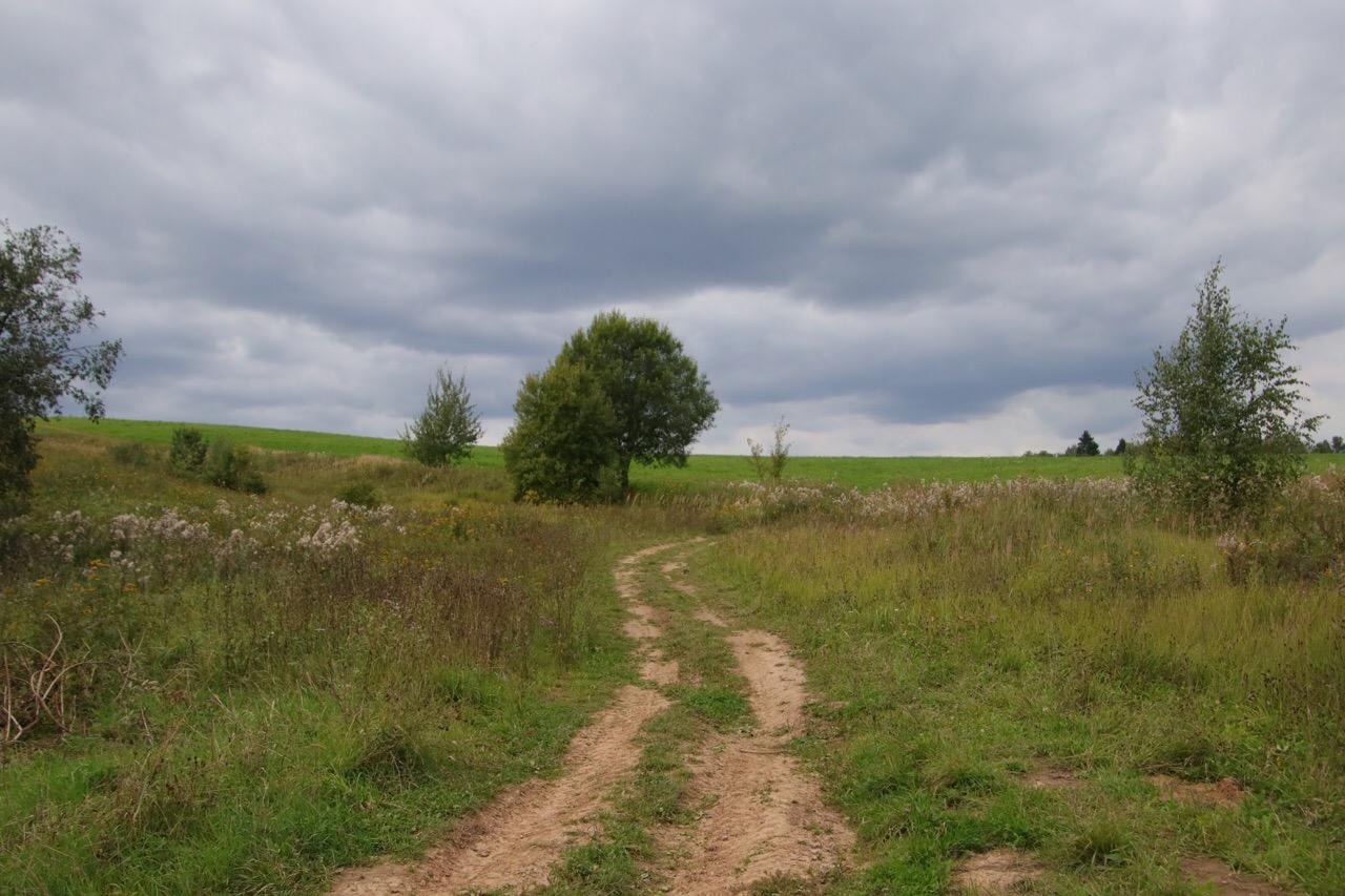 Поле у д.Носоново