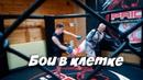 Любительские бои без правил в клетке Воронеж
